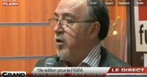 figra-grandlille