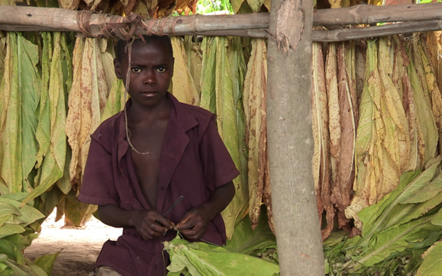 Malawi-face-aux-hyenes_MOINS_40_FIGRA_2019