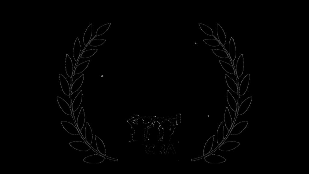 Prix du 25ème Anniversaire FIGRA
